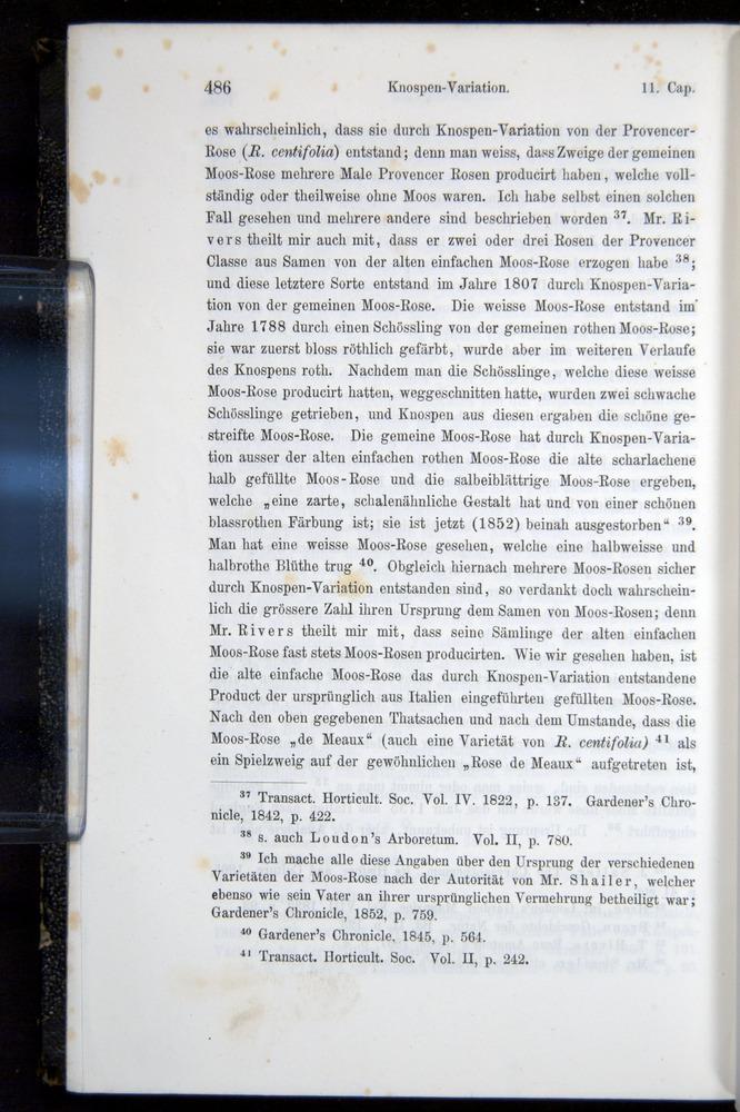 Image of Darwin-F914.1-1868-00486