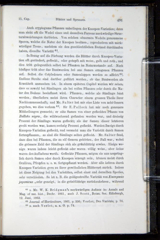 Image of Darwin-F914.1-1868-00491