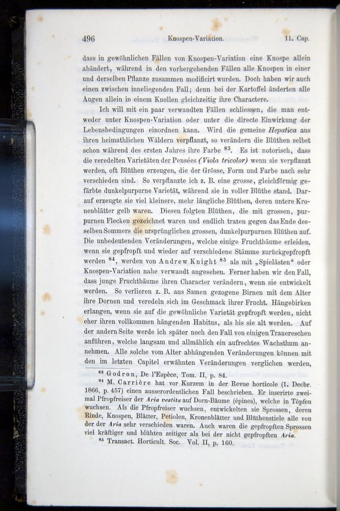 Image of Darwin-F914.1-1868-00496