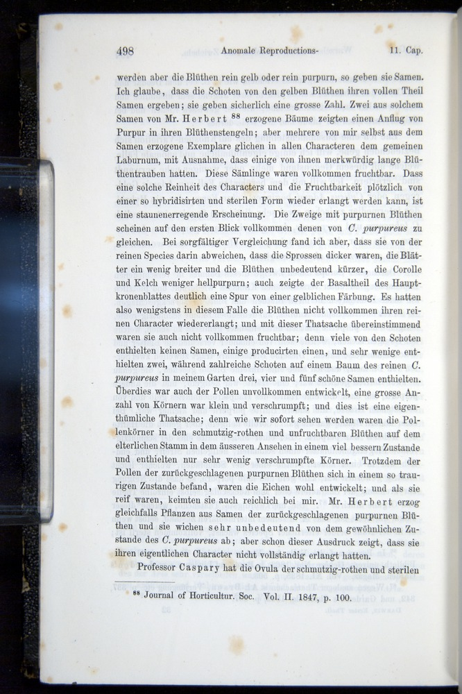 Image of Darwin-F914.1-1868-00498