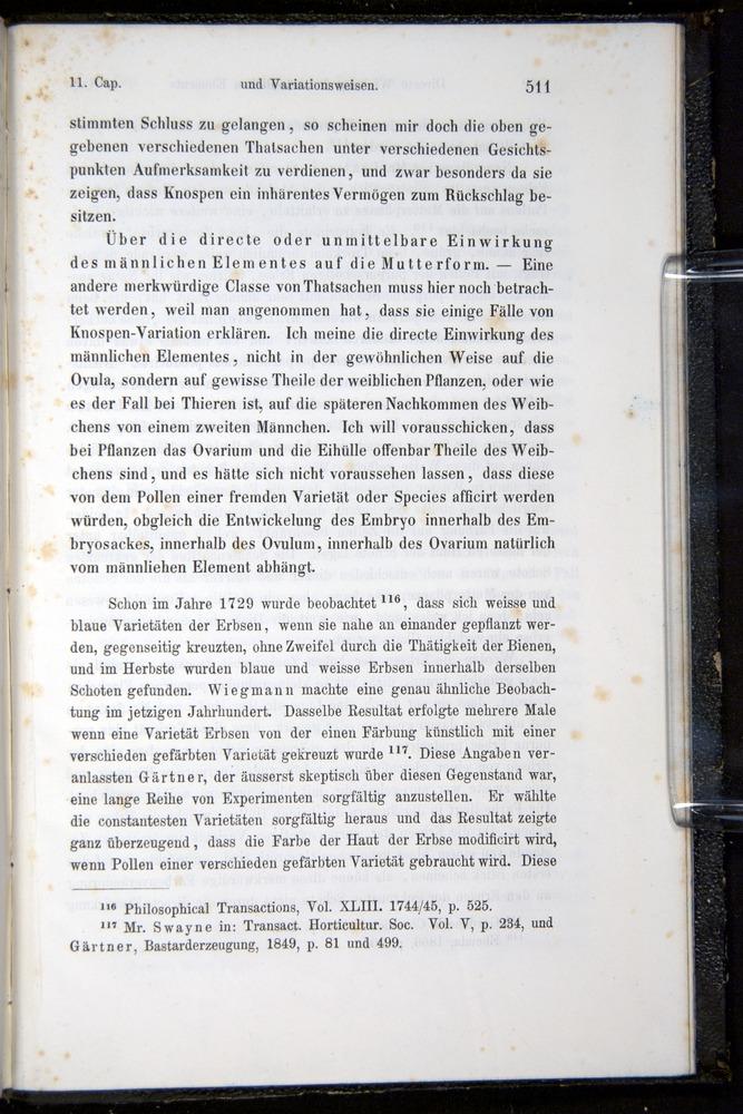 Image of Darwin-F914.1-1868-00511