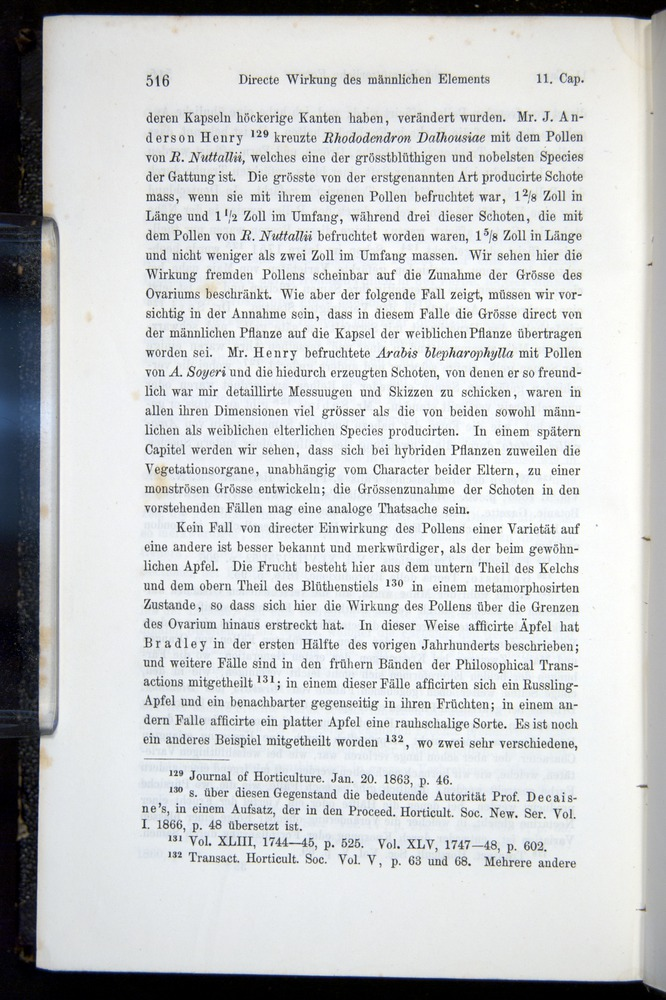 Image of Darwin-F914.1-1868-00516