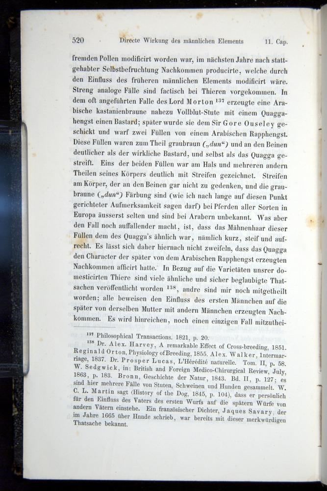 Image of Darwin-F914.1-1868-00520