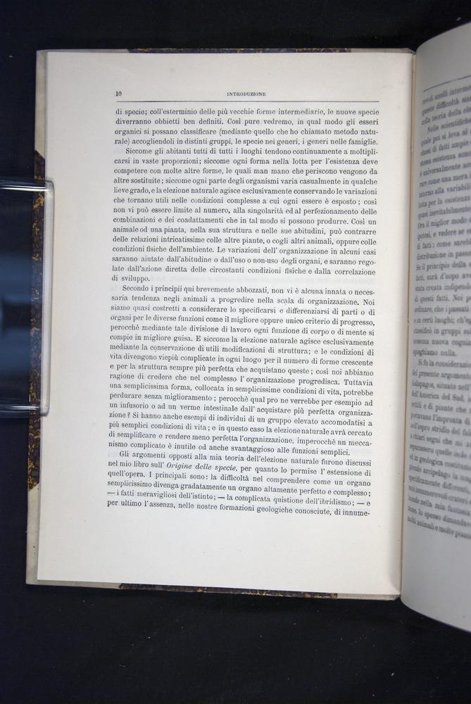 Image of Darwin-F920-1876-010