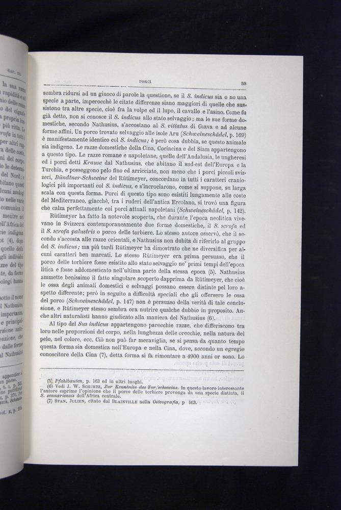 Image of Darwin-F920-1876-059