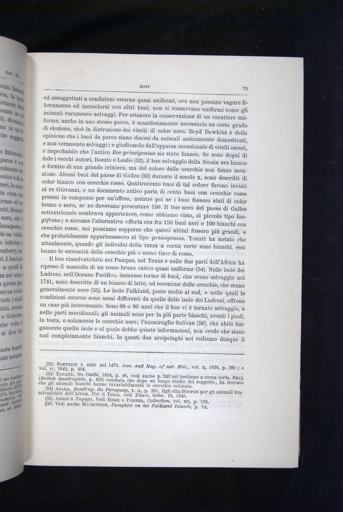 Image of Darwin-F920-1876-073