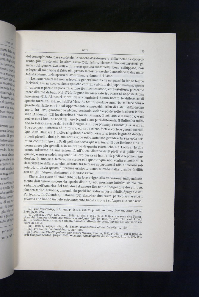 Image of Darwin-F920-1876-075