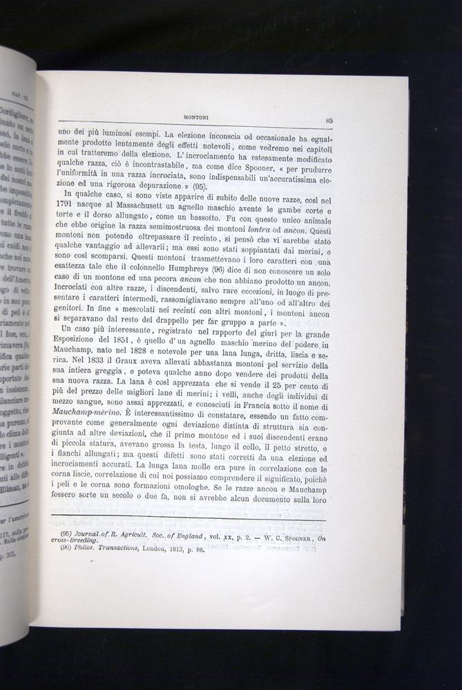 Image of Darwin-F920-1876-085