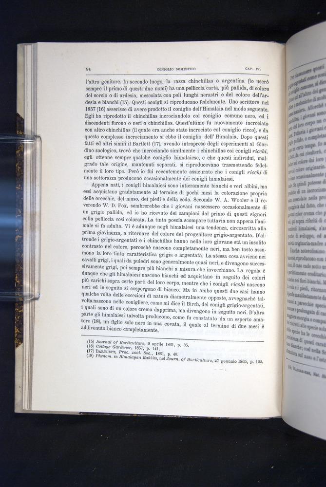 Image of Darwin-F920-1876-094
