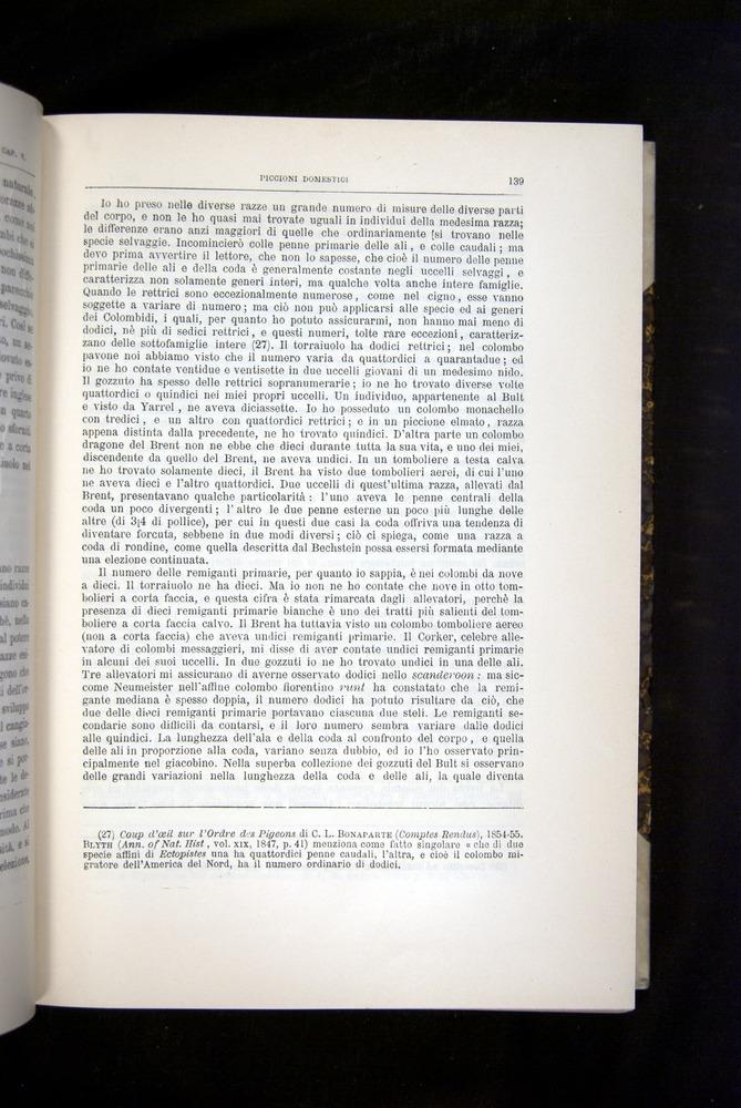 Image of Darwin-F920-1876-139