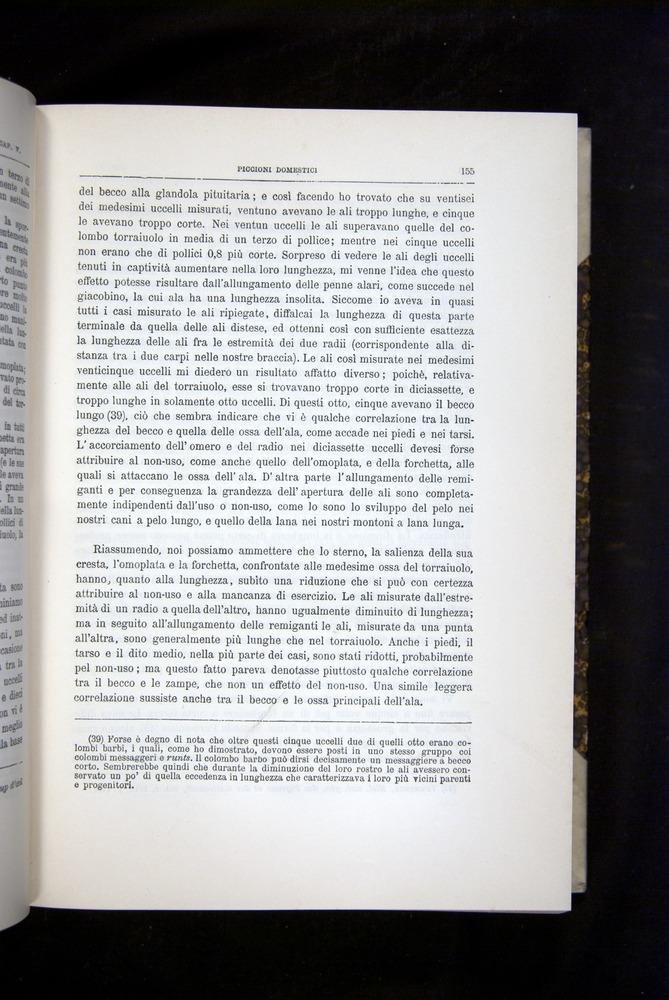 Image of Darwin-F920-1876-155