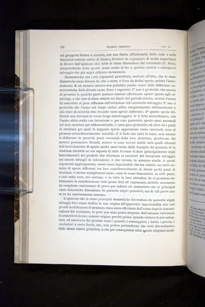 Image of Darwin-F920-1876-178