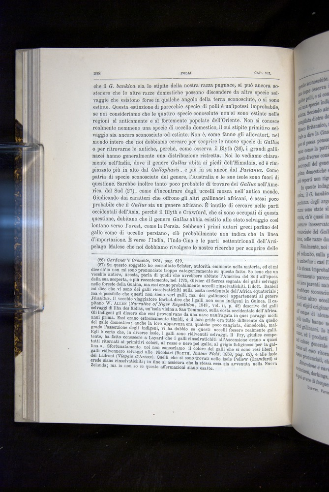 Image of Darwin-F920-1876-208
