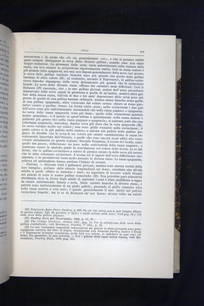 Image of Darwin-F920-1876-217