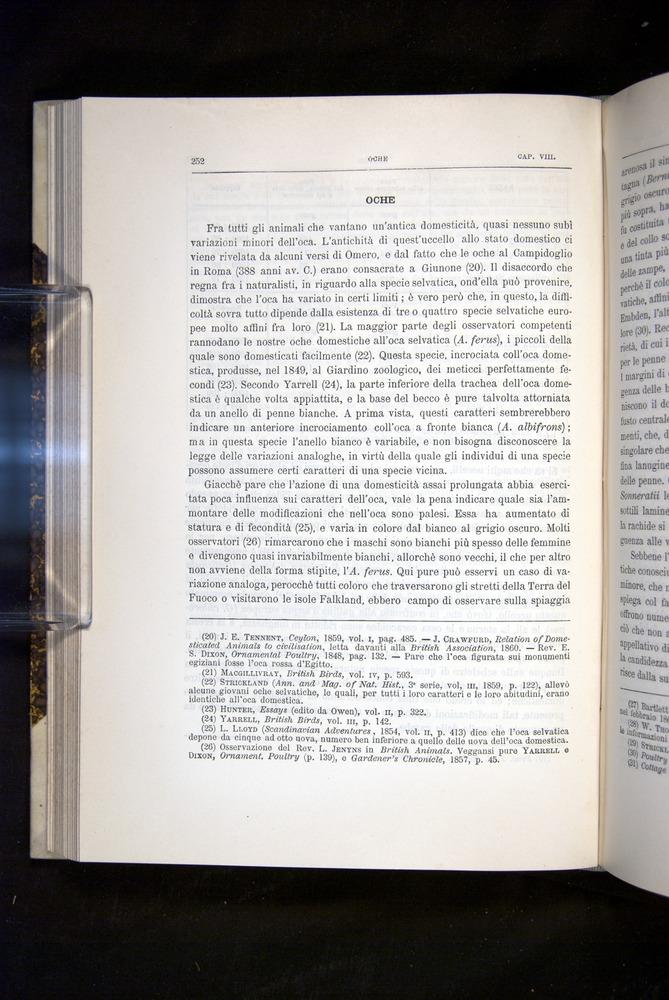 Image of Darwin-F920-1876-252