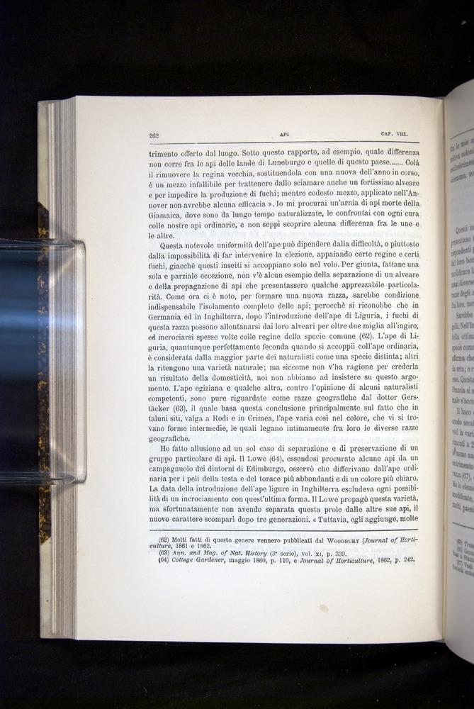 Image of Darwin-F920-1876-262