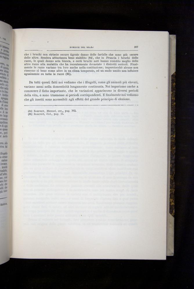 Image of Darwin-F920-1876-267