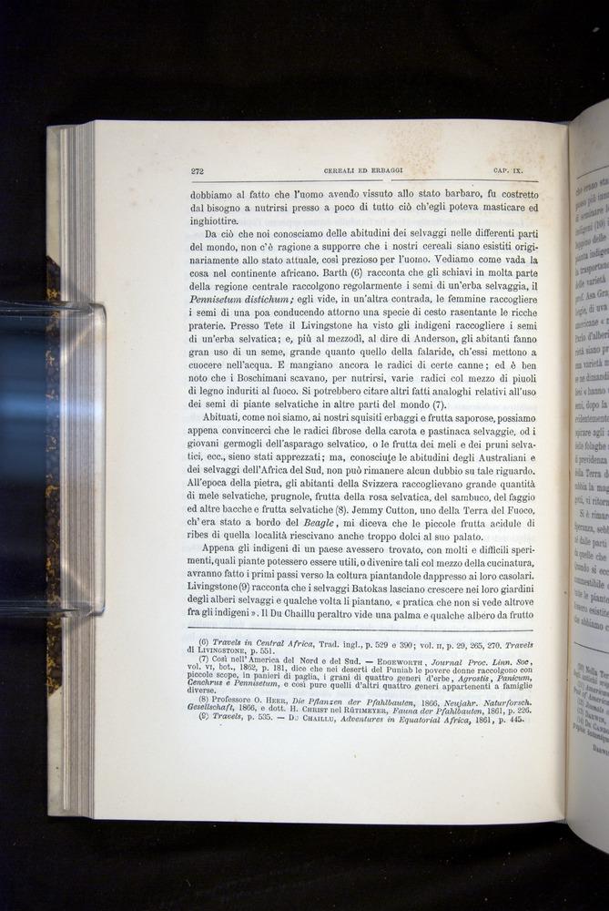 Image of Darwin-F920-1876-272