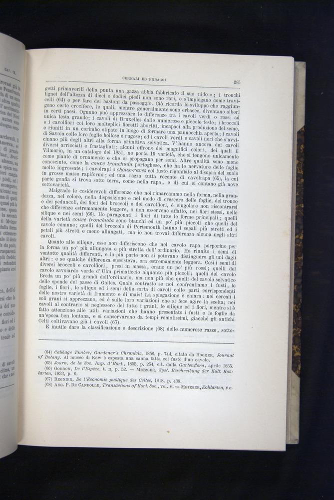 Image of Darwin-F920-1876-285