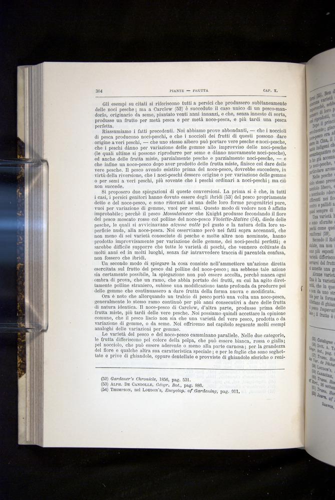 Image of Darwin-F920-1876-304