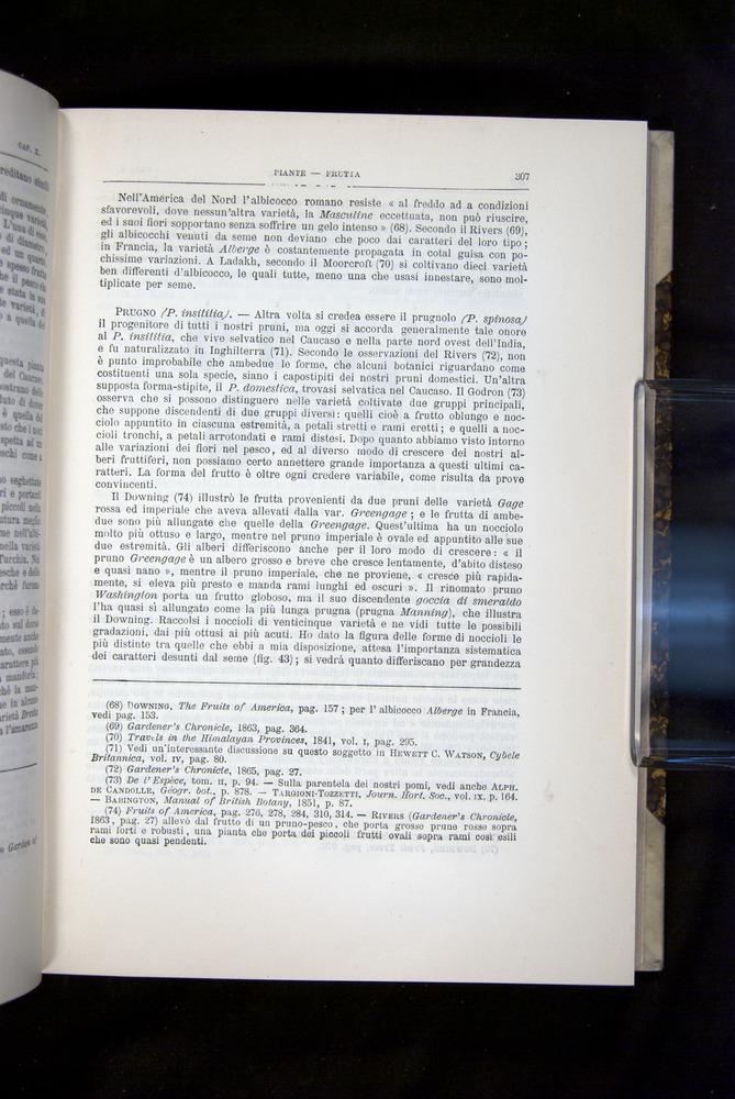 Image of Darwin-F920-1876-307
