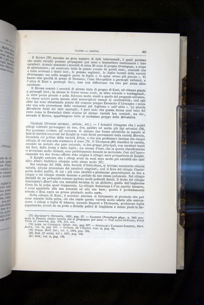 Image of Darwin-F920-1876-309