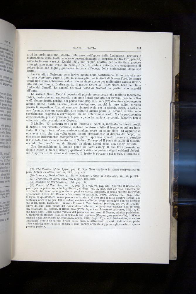 Image of Darwin-F920-1876-311