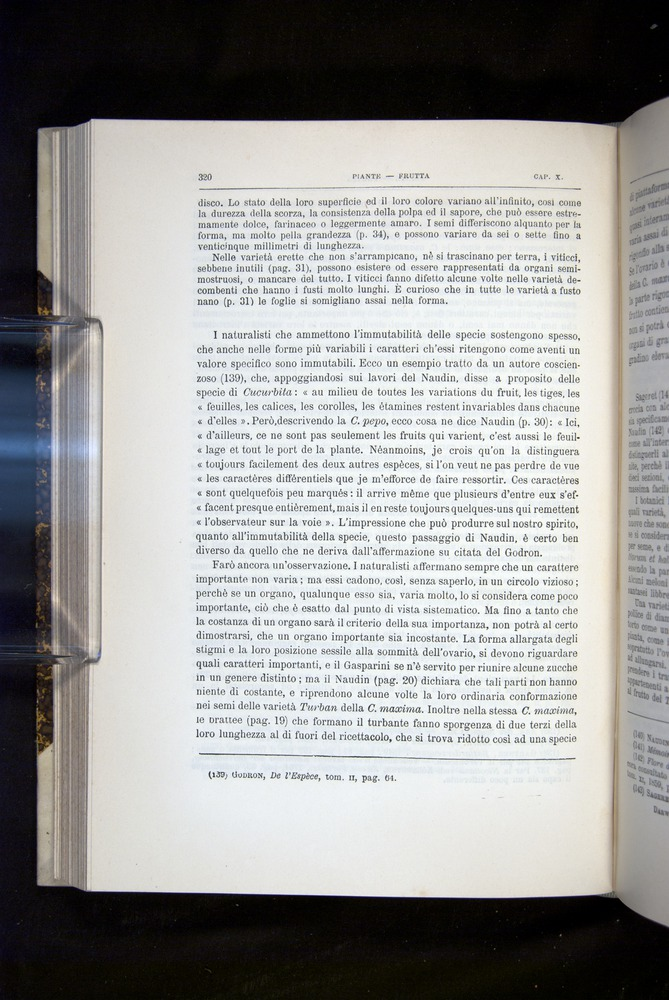 Image of Darwin-F920-1876-320