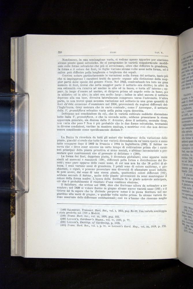 Image of Darwin-F920-1876-330