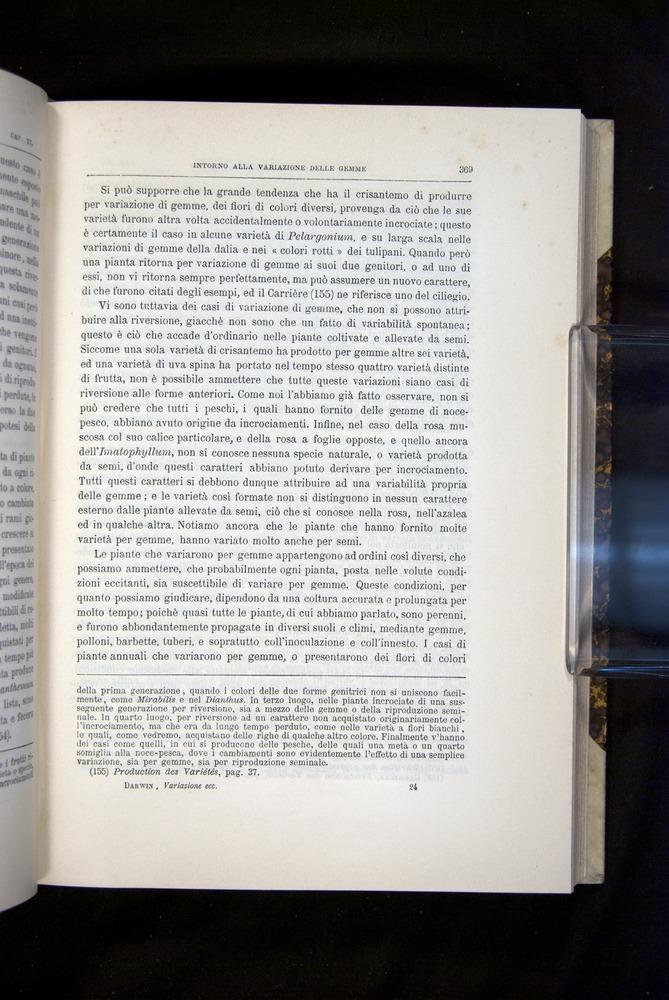 Image of Darwin-F920-1876-369