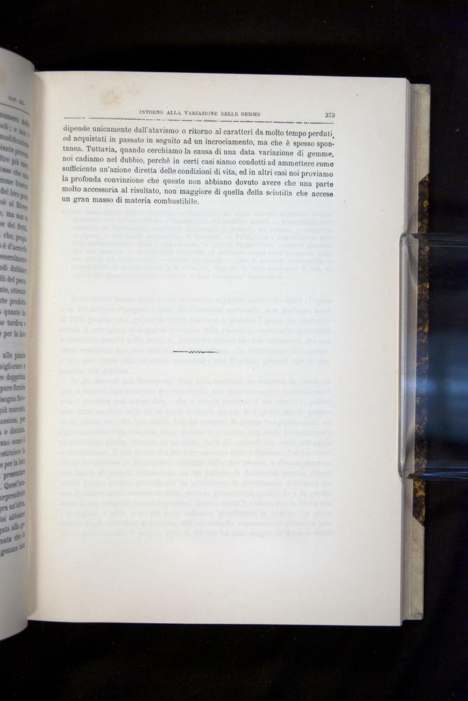 Image of Darwin-F920-1876-373