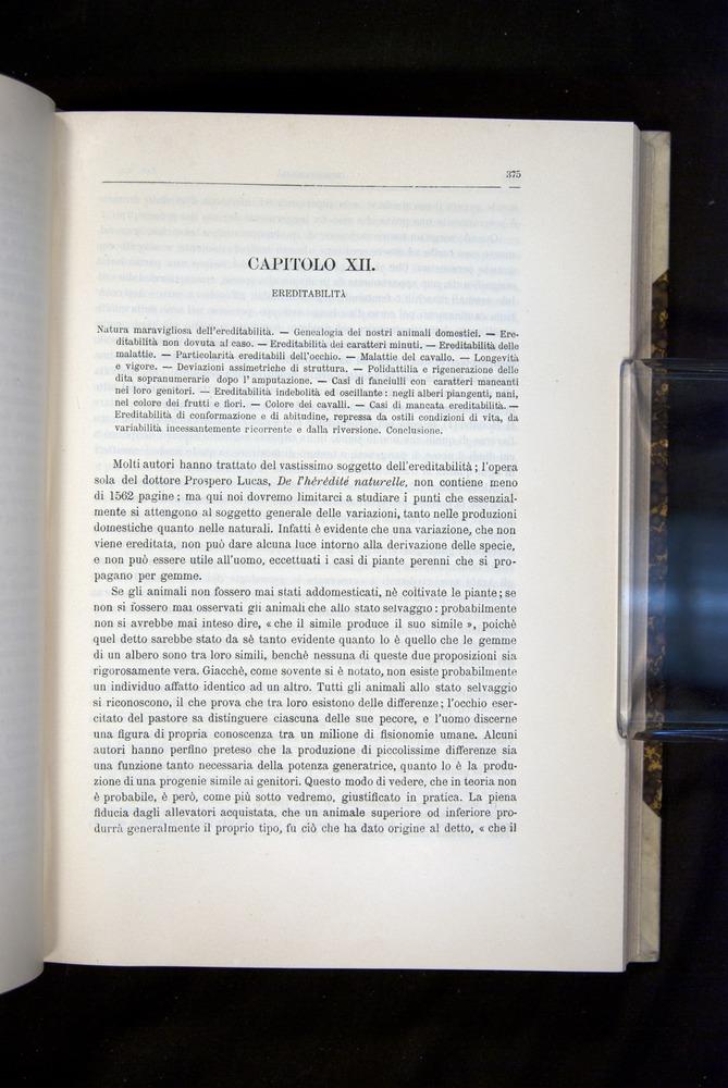 Image of Darwin-F920-1876-375