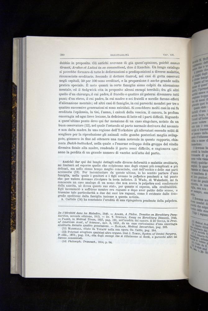 Image of Darwin-F920-1876-380