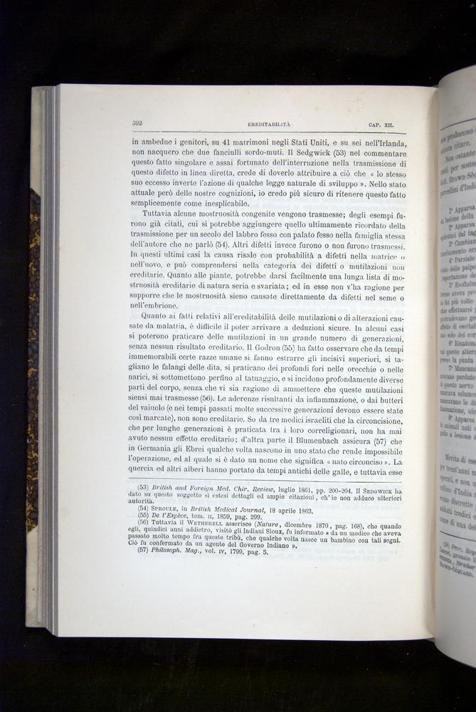 Image of Darwin-F920-1876-392