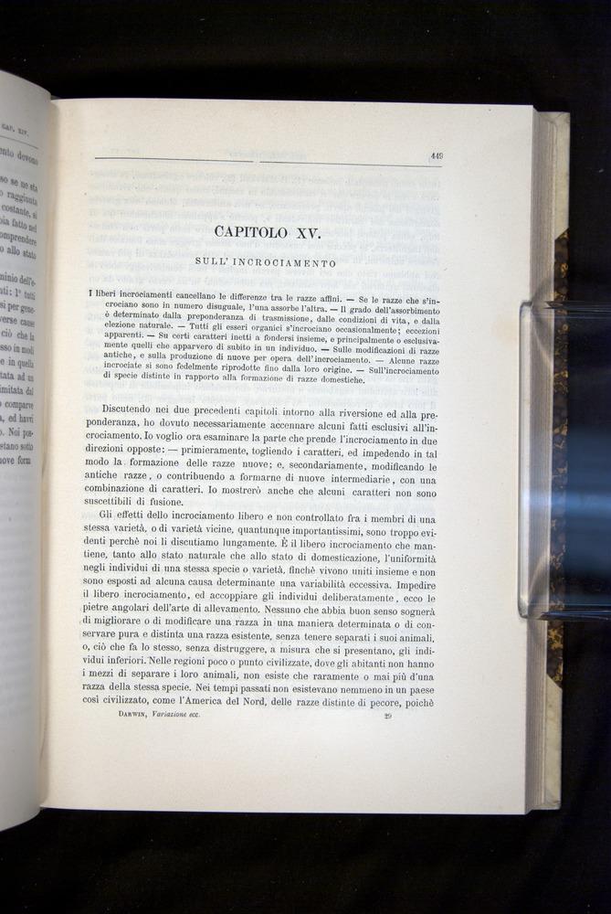 Image of Darwin-F920-1876-449