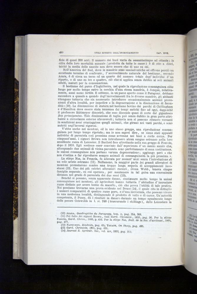 Image of Darwin-F920-1876-480