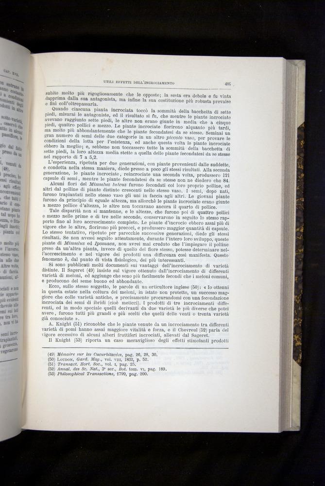 Image of Darwin-F920-1876-489
