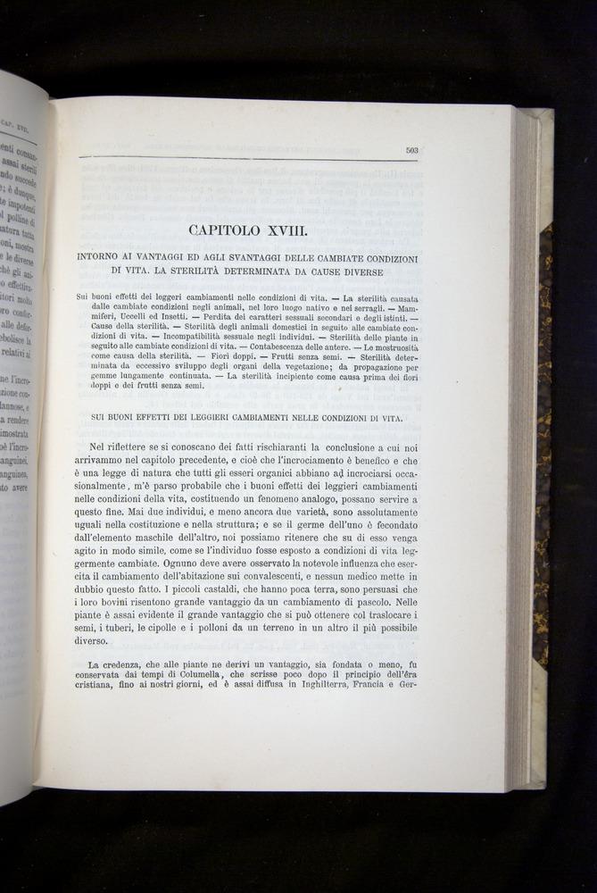 Image of Darwin-F920-1876-503