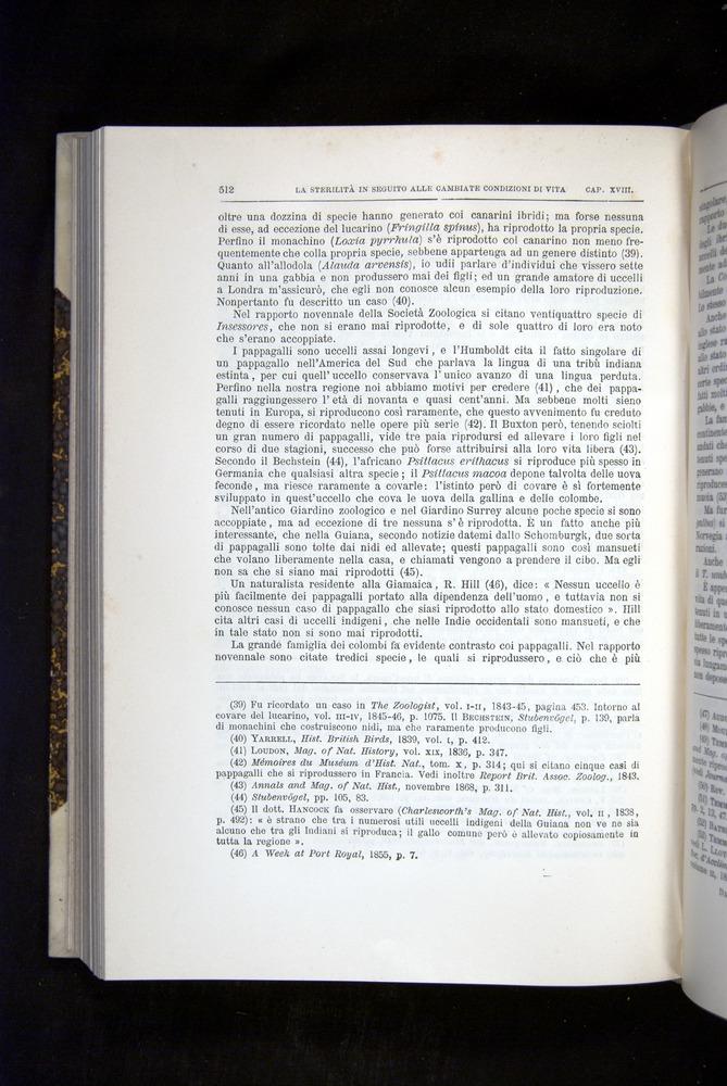Image of Darwin-F920-1876-512