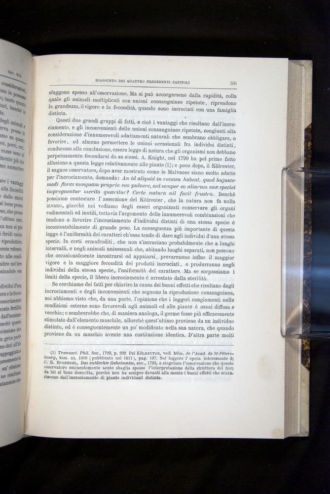 Image of Darwin-F920-1876-531