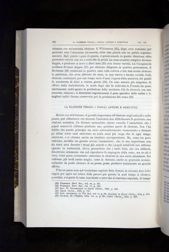 Image of Darwin-F920-1876-550