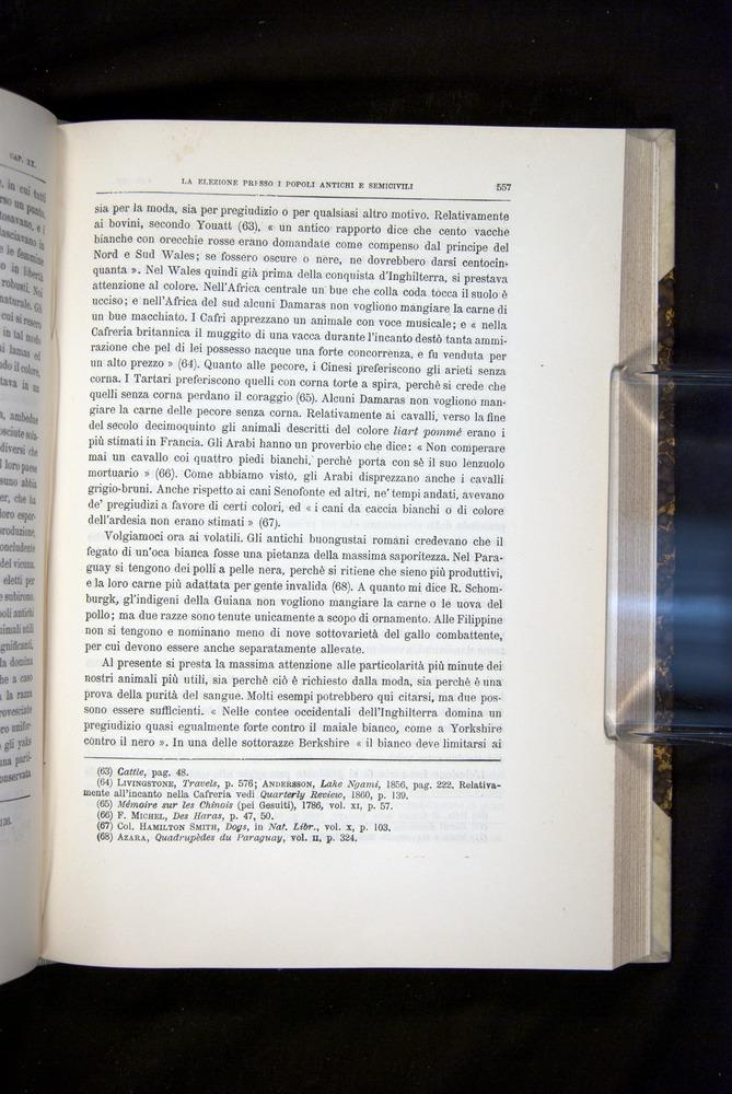 Image of Darwin-F920-1876-557