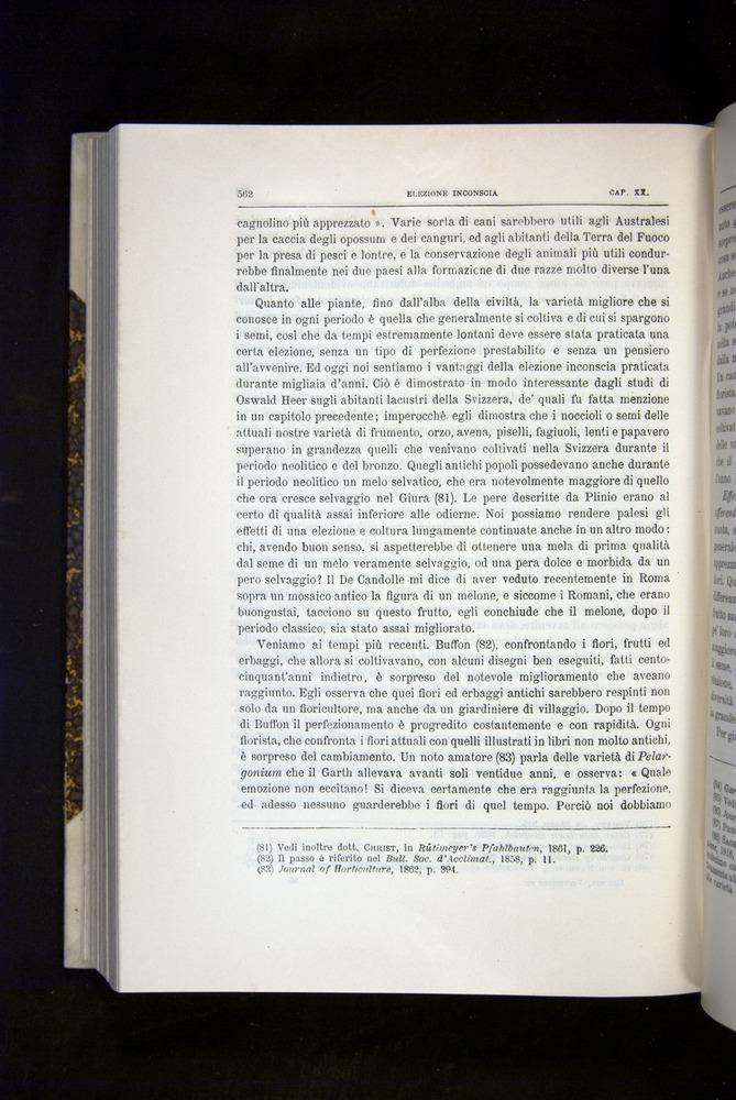 Image of Darwin-F920-1876-562