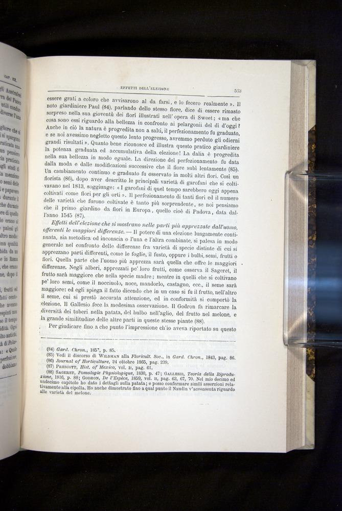 Image of Darwin-F920-1876-563