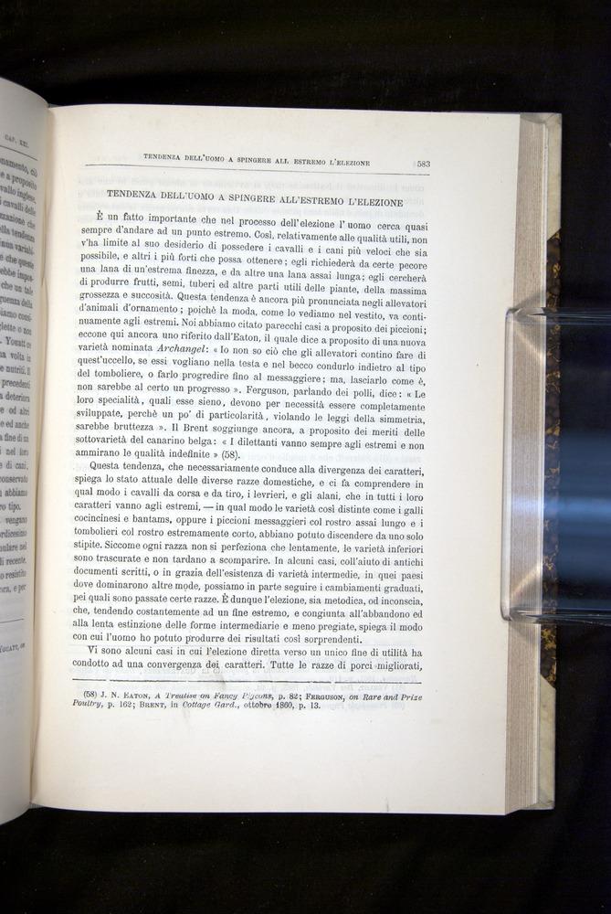 Image of Darwin-F920-1876-583
