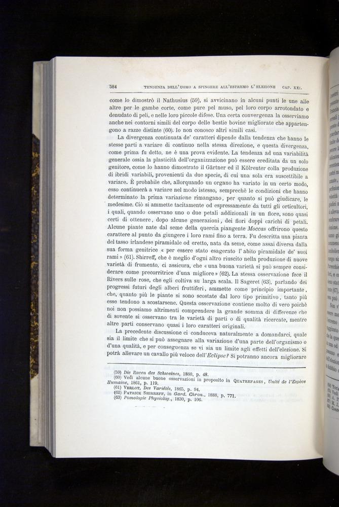 Image of Darwin-F920-1876-584