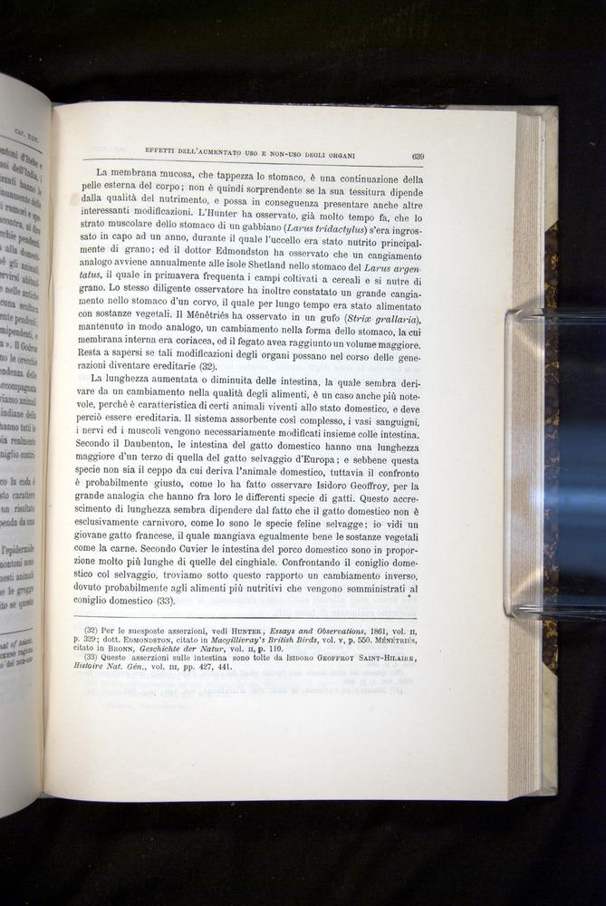 Image of Darwin-F920-1876-639