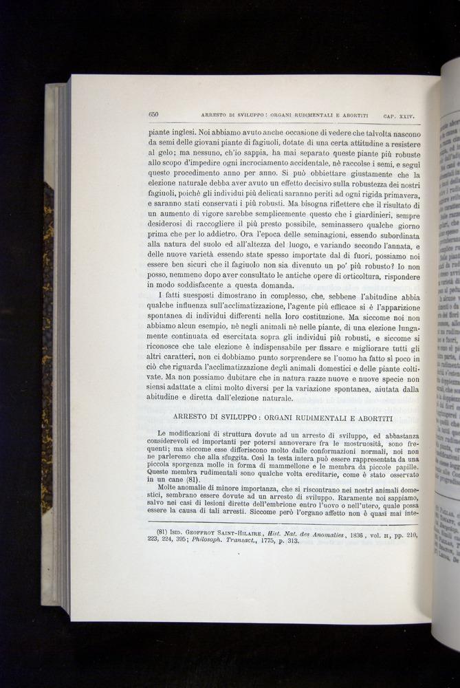 Image of Darwin-F920-1876-650