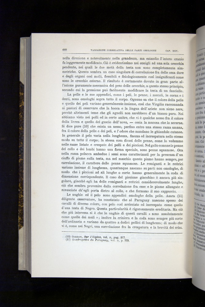 Image of Darwin-F920-1876-660