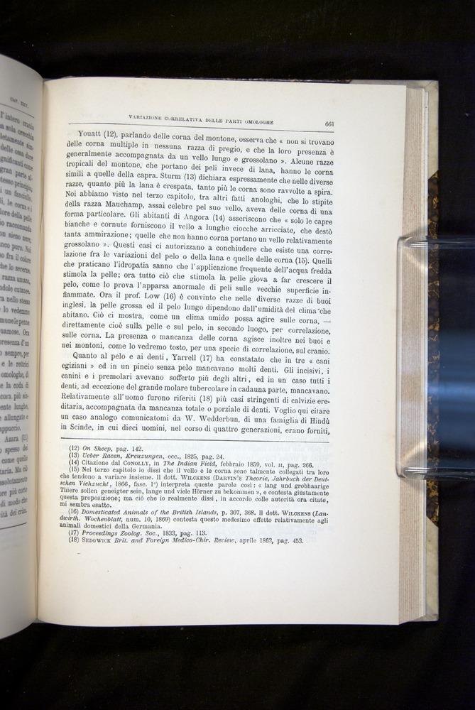 Image of Darwin-F920-1876-661